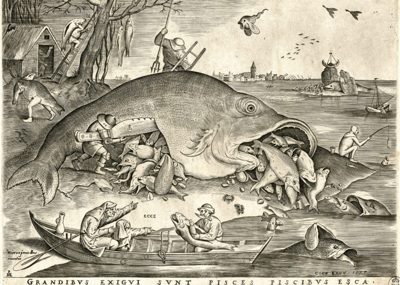 The legacy of Hieronymus Bosch